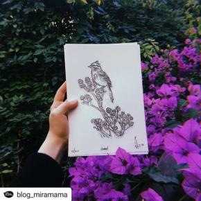 Mañana a las 10:30 se presenta esta joyita en @mundopedal @blog_miramama • • • • • Michi-messi está feliz, todos felices @michimc13 ・・・ A partir de las fotos de @andreasbarbie , @carocurbelo tuvo la genial idea de hacer un librito para pintar, para el cual realicé las ilustraciones y luego @caja_baja hizo este grabadito del chingolito de tapa. (Me encanta esta serie de eventos afortunados!) 💛🌿 – Los esperamos el sábado 6 a las 10:30hs para la presentación del libro en @mundopedal y empezar a darle color a !! 🕊🎨✨ – Pd: después de la presentación habrá un recorrido por el parque para avistamiento de aves con Agus de @aves_uruguay 🌴🍃